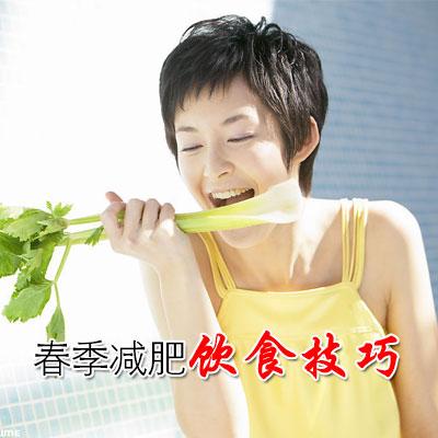 春季减肥饮食技巧